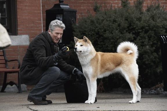 Filmul Hachiko: Povestea unui Câine (2009)