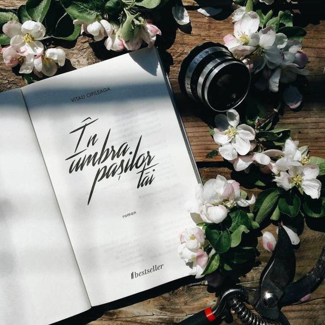 In-umbra-pasilor-tai-vitali-cipileaga-editura-bestseller